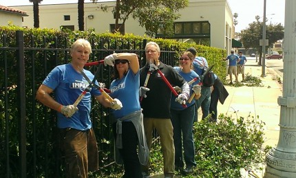 Discovery Impact-Landscaping (1)